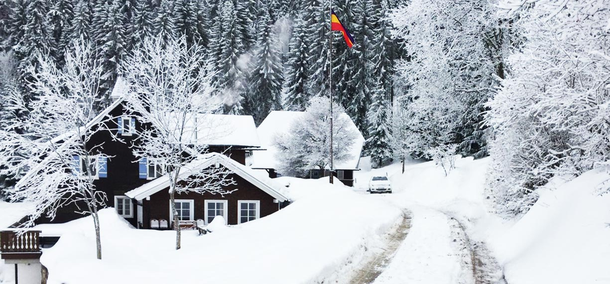 header_home-winter-3